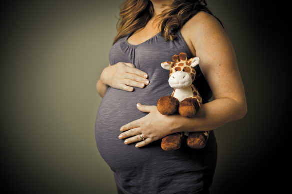 maternity stuffed animal