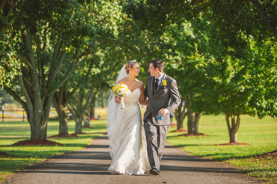 tree lined driveway south carolina ranch wedding